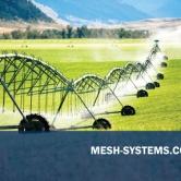 MESH-bc-ID2